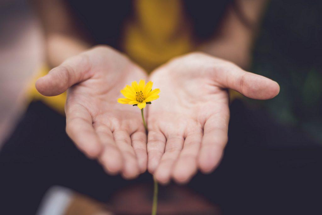 Savoir-être : Aide centrée sur la personne