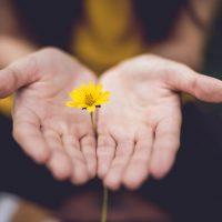 P2 – Savoir-être (Doula Care ®) : Aide centrée sur la personne